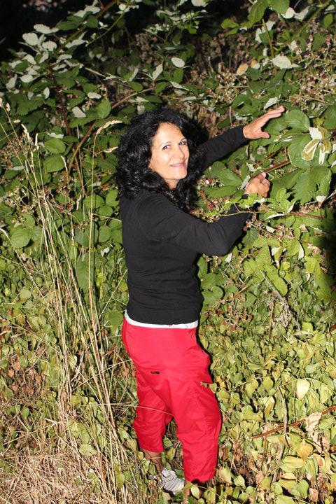 Aunty Azar Picking Blackberries